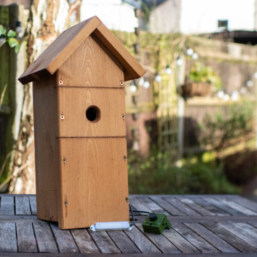 Wooden Bird Box with HD Wifi night vision camera